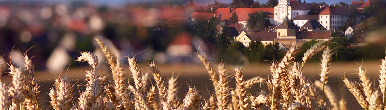 Maierbräu Altomünster - Sicht vom Feld auf Altomünster